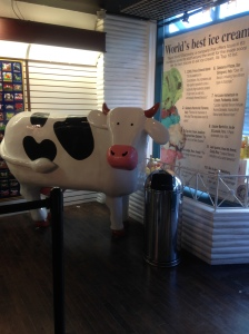 Iconic Cow statue in front of the store. Also shows the list of best places to get ice cream. Cows is number one!